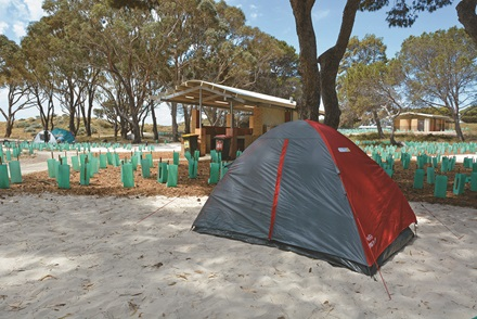 Rottnest campgrounds tent site