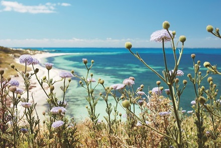 Rottnest Island Natural Attractions
