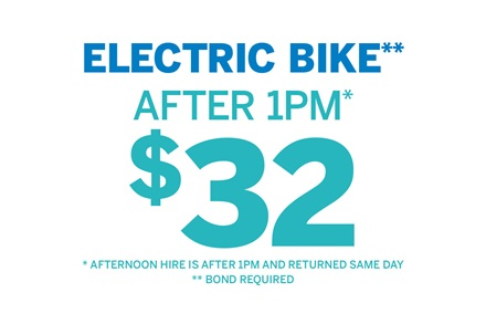 Electric Bike After 1pm $32